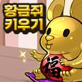 황금 쥐 키우기